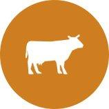 Icono Vaca Trebolac