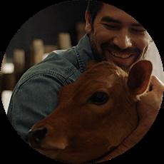 Vacas Trebolac