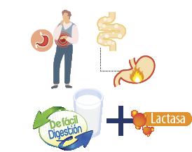 Beneficios Leche deslactosada Trebolac
