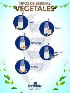 Infografía de bebidas vegetales